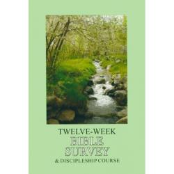 Engels, Bijbelstudie, 12 weken Bijbel overzicht.