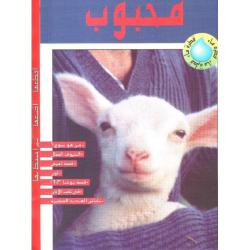 Hij houdt van je, Arabisch
