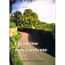 Spaans, Boek, Brieven aan jonge mensen, H.L. Heijkoop