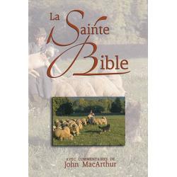 Frans, Bijbel, Studiebijbel, La Sainte Bible, John MacArthur