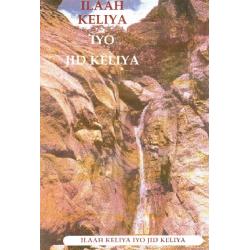 Arabisch, Bijbelstudie, Eén God één Weg, Kevin G. Dyer, Meertalig