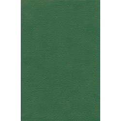 Esperanto, Bijbel, Medium formaat, Soepel kaft