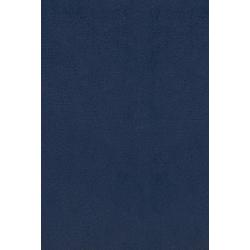 Farsi/Perzisch, Bijbel, TPV, Medium formaat, Paperback