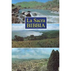 Italiaans, Bijbel, La Nuova Diodati, Groot formaat, Paperback