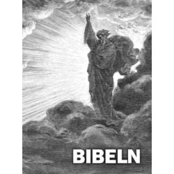 Zweeds, Bijbel, Groot formaat, Harde kaft