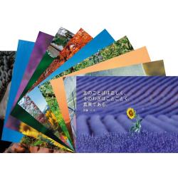 Japans, Ansichtkaarten met Bijbeltekst, Diverse