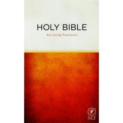 Engels, Bijbel, NLT, Groot formaat, Paperback