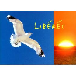 Frans, Brochure, Bevrijd
