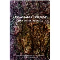 Spaans, Bijbel, RV 2001, Groot formaat, Paperback