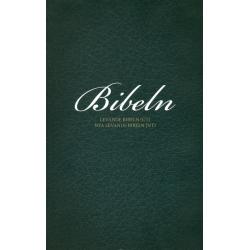 Zweeds, Bijbel, Groot formaat, Paperback