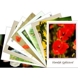 Nederlands, Ansichtkaart met Bijbeltekst, Hartelijk Gefeliciteerd, Diverse