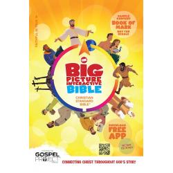 Engels, Bijbel, NIV, Big Picture Interactive Bible