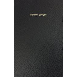Hebreeuws, Bijbelgedeelte, Nieuw Testament, Groot formaat, Harde kaft