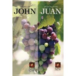 Engels - Spaans, Evangelie van Johannes