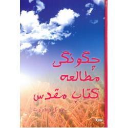 Farsi/Perzisch, Hoe je de Bijbel kunt bestuderen, Samuel Ridout