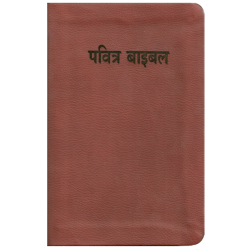 Hindi, Bijbelgedeelte, Nieuw Testament, ERV, Groot formaat, Paperback