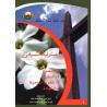 Arabisch, Christelijke verantwoordelijkheid