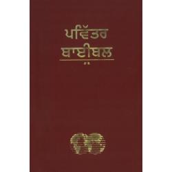 Punjabi, Bijbel, Groot formaat, Soepele kaft