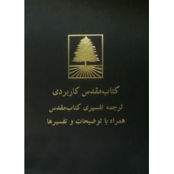 Farsi/Perzisch, Bijbel, Life Application Bible, Studiebijbel, Groot formaat, Harde kaft