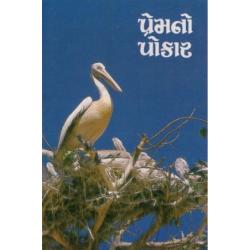 Gujarati Nieuw Testament. ERV. Groot formaat. Paperback