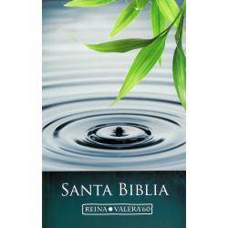 Spaans, Bijbel, RV 60, Groot formaat, Paperback