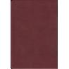 Dari, Bijbel, Medium formaat, Stevige kaft