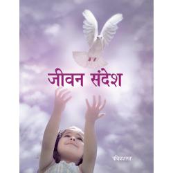 Hindi, Nieuw Testament, Klein formaat. Paperback