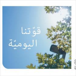 Arabisch, Brochure, Dagelijkse sterkte