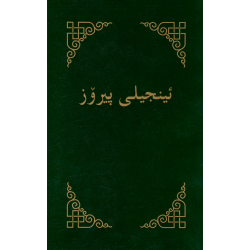 Koerdisch-Sorani, Nieuw Testament, Medium formaat, Paperback