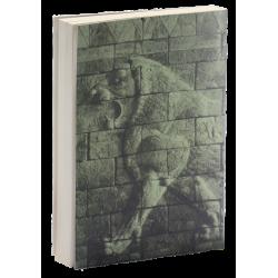 Farsi/Perzisch, In Gods ondergrondse, Richard Wurmbrand