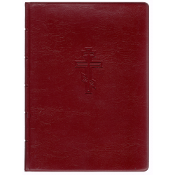 Russisch, Nieuw Testament, Medium formaat, Soepele kaft