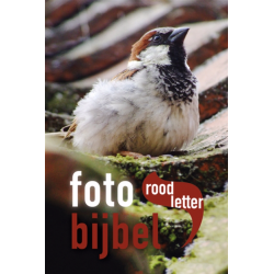 Nederlands, Roodletter Fotobijbel, Het Boek, Medium formaat, Harde kaft