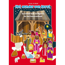 Nederlands, Kinderboek, Het wonder van kerst, Michel de Boer