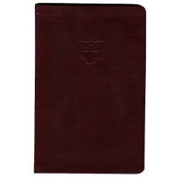 Engels, Nieuw Testament, TNIV, Groot formaat, Luxe uitgave