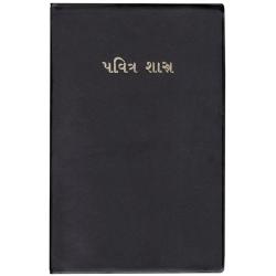 Gujarati, Bijbel, Groot formaat, Soepele kaft