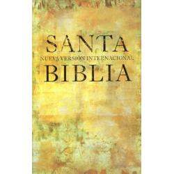 Spaans, Bijbel, NVI, Groot formaat, Paperback, Geel