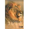 Roemeens, Bijbels dagboek, De Heer is nabij, 2020