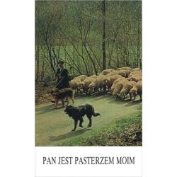 Pools, Bijbelstudie, Psalm 23, Henryk Młynarski