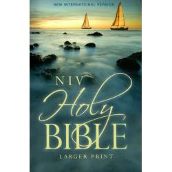 Engels, Bijbel, NIV, Groot formaat, Grote letter, Kust
