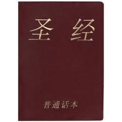 Chinees (modern), Bijbel, ERV, Medium formaat, Soepele kaft