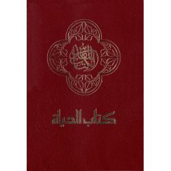 Arabisch, Bijbel, NAV, Medium formaat. Paperback
