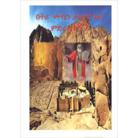 Tigrinya, Kinderbijbel, Bijbelse Geschiedenis, Nayzghi Tewelde