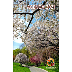 Frans, Agenda 2021, Meertalig