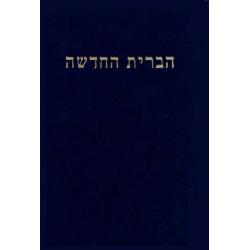Hebreeuws, Nieuw Testament, Klein formaat, Harde kaft