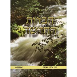 Hebreeuws, Nieuw Testament, Klein formaat, Paperback, Water