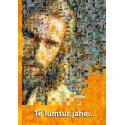 Albanees, Brochure, Gelukkig is…, Petra Schaadt