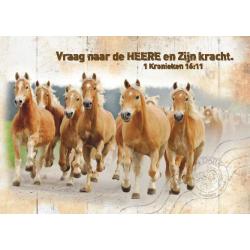 Nederlands, 10 Kaarten met Bijbeltekst, 1 Kron. 16:11