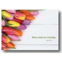 Nederlands, 10 Kaarten met Bijbeltekst, Deut. 31:6