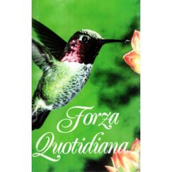 Italiaans, Brochure, Dagelijkse sterkte