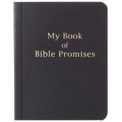 Engels, Boekje, My Book of Bible Promises